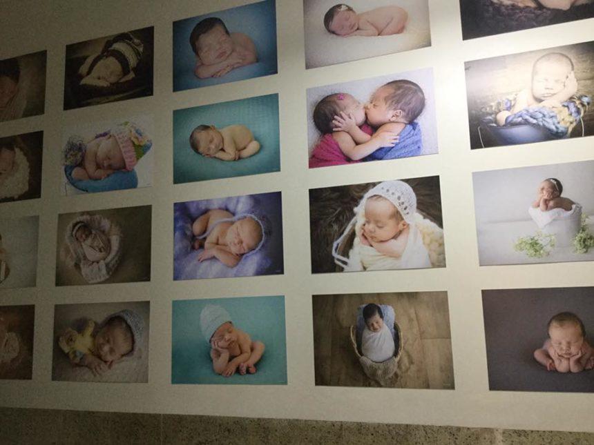 Exposição de fotos NEW BORN – Carolina Terra